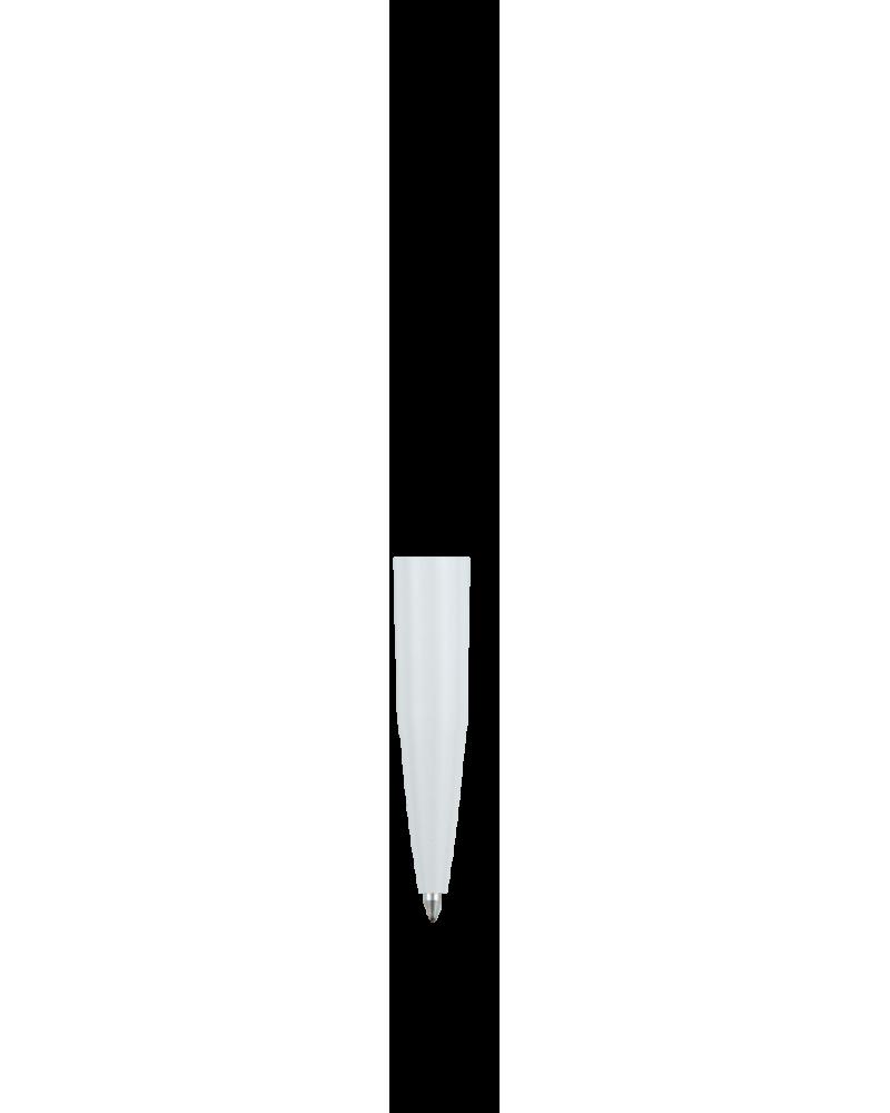 Carina Corpo